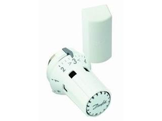 thermostatkopf raw k 5032 mit fernf hler 2m danfoss thermostatk pfe zubeh r ersatzteile. Black Bedroom Furniture Sets. Home Design Ideas